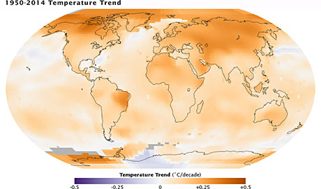 Global map of 1950-2014 temperature trend